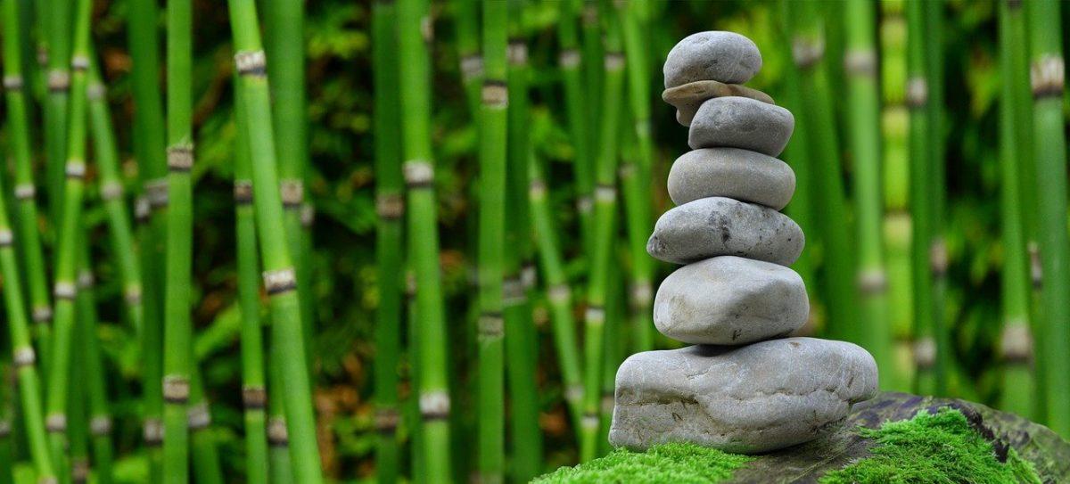 Śliczny oraz estetyczny ogród to zasługa wielu godzin spędzonych  w jego zaciszu w toku pielegnacji.